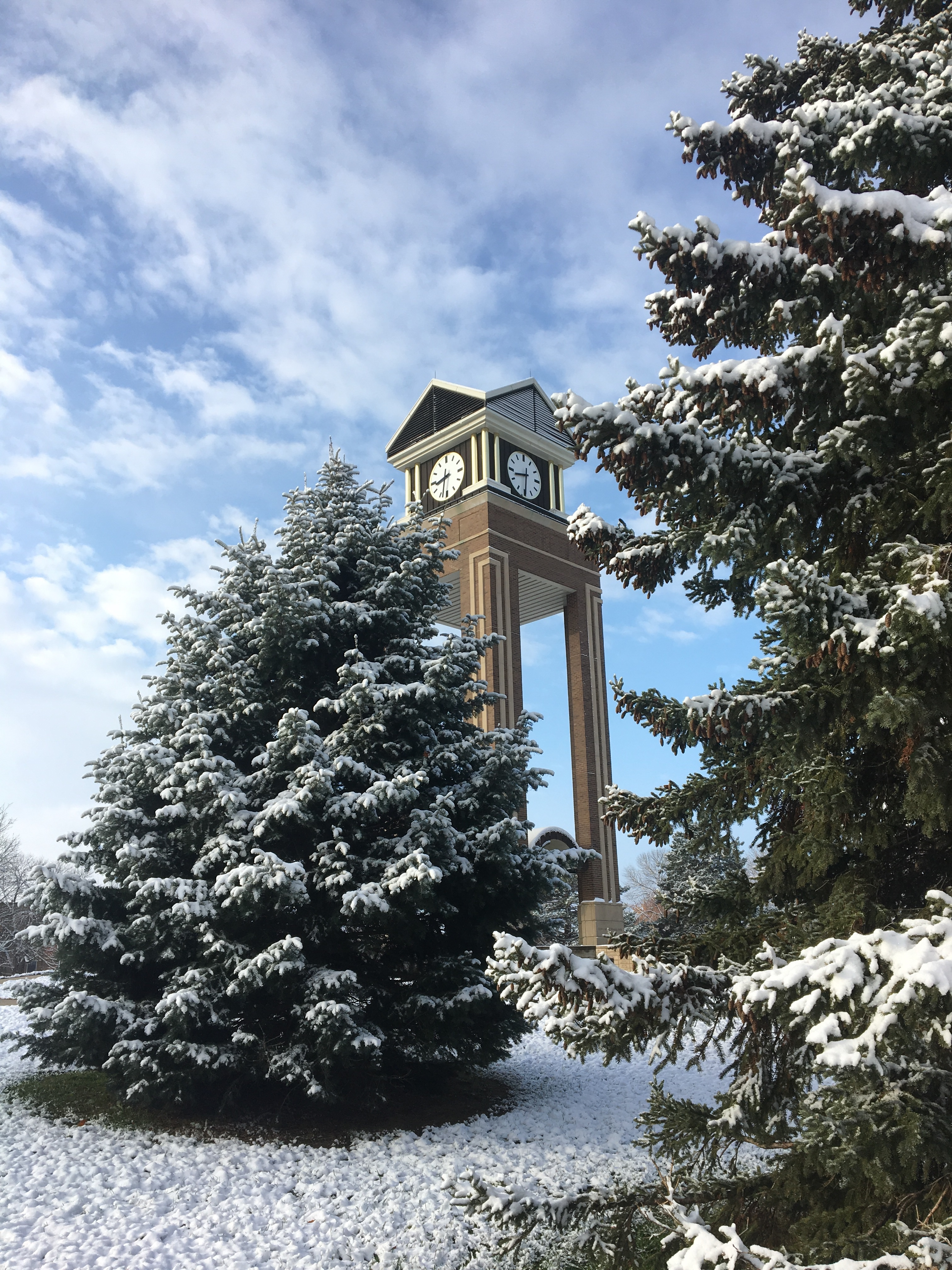 Snow-covered ground and pine trees with clock tower in the background