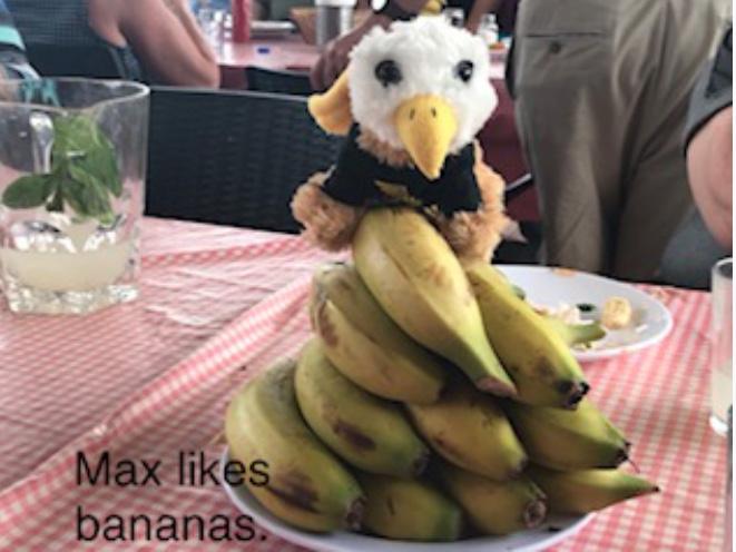 Max likes bananas