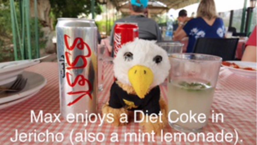 Max enjoys a Diet Coke in Jericho (also a mint lemonade)