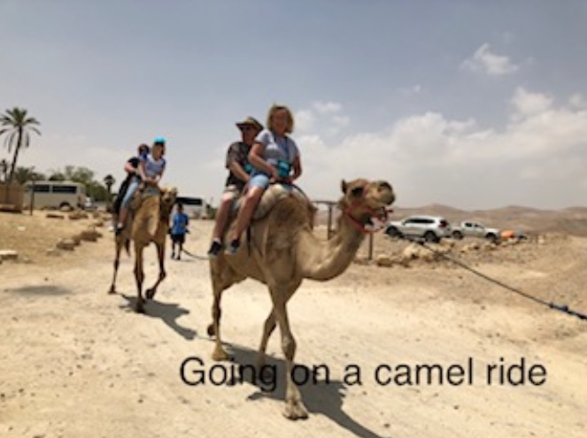 Going on a camel ride