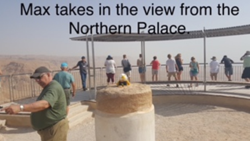 Makes takes in the view from the Northern Palace