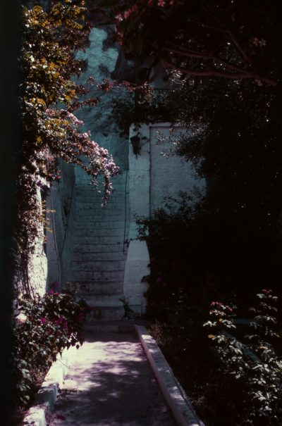 Through the Shadowed Passage by Frances Flanagan
