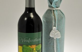 Vinification, by Ashley James