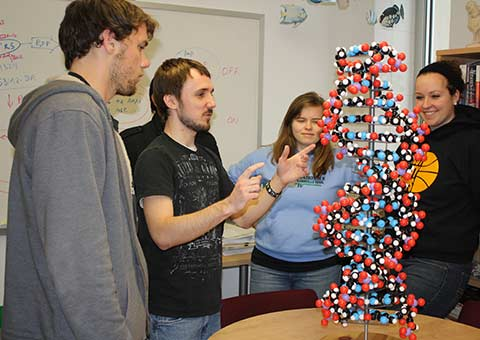 Students observing a model DNA strand