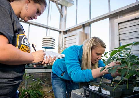 Two students examine plant life in the greenhouse