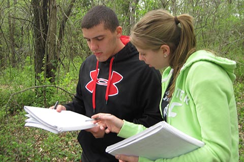 Students work on assignments in the outdoors