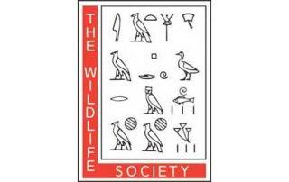 the wildlife society