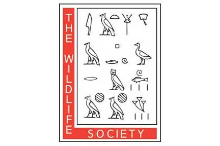 the wildlife society