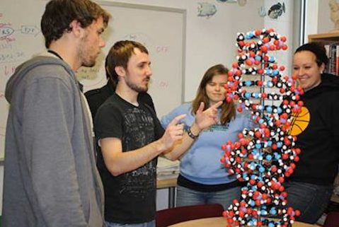 Students observing a model DNA strand