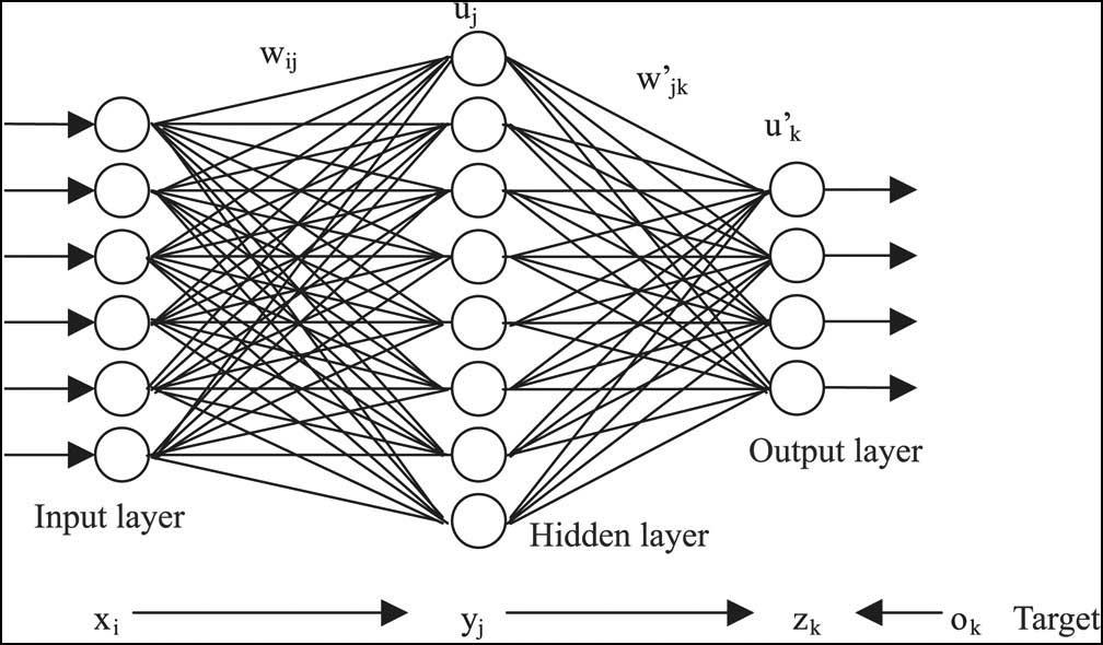 input layer, hidden layer, output layer, target