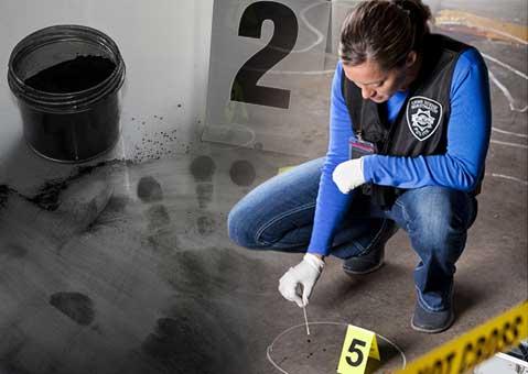 forensic crime scene investigation