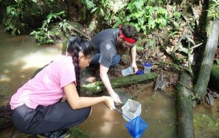 Biology research - fishing in stream