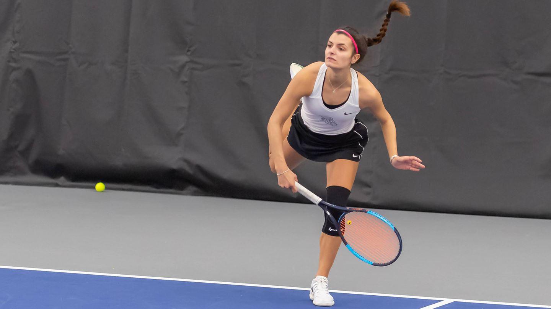 griffon tennis