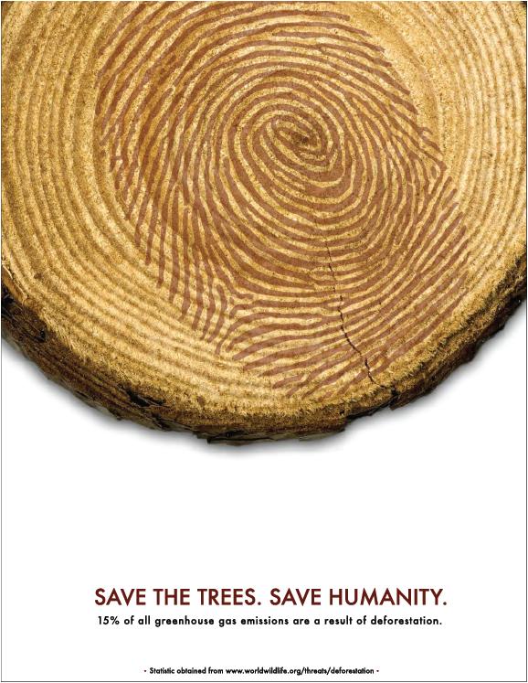 wood slice with fingerprint superimposed on tree rings