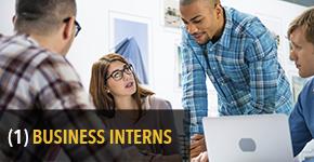 1. Business Interns