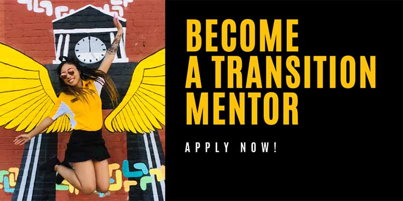 Become a transition mentor - apply now