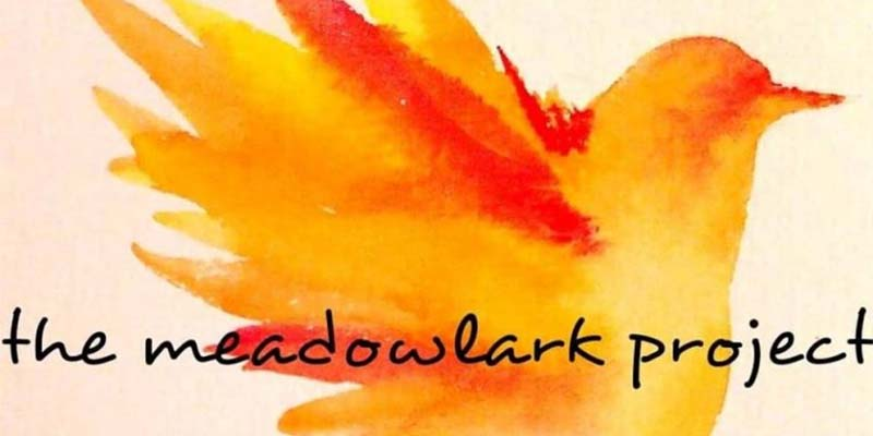 the meadowlark project